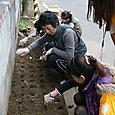 東側花壇球根植え(2011年11月19日)